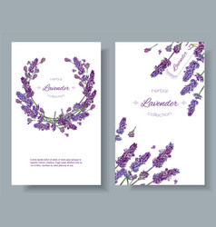 lavender flowers banners vector image