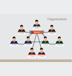 organization chart infographics vector image