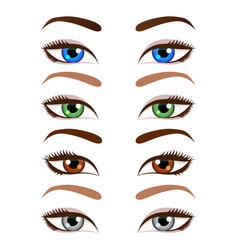 set of cartoon beautiful women eyes and eyebrows vector image
