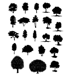 silhouettes of assorted trees vector image