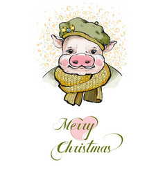 The portrait of a piglet in a round soft beret on vector