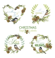 Vintage Christmas Birds - Banners Tags and Labels vector
