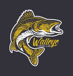 Walleye fishing club logo in black background vector