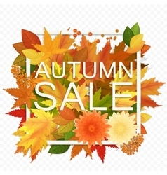 Autumn sale discount banner on the transperant vector image