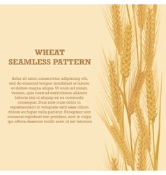 Ears of wheat vertical border seamless pattern for vector image