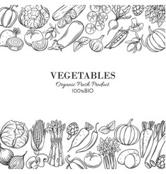 Poster template borders with hand drawn vegetables vector