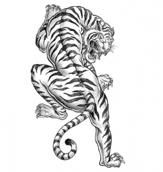 shaded asian tiger vector image vector image