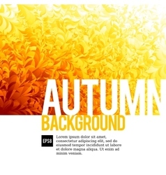 Abstarct autumn backgrounds vector