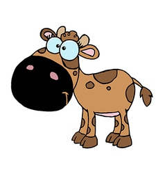 Brown Baby Cow vector image