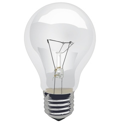 Incandescent-Light-Bulb-Clear vector