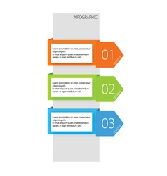 Infographic options three color vector