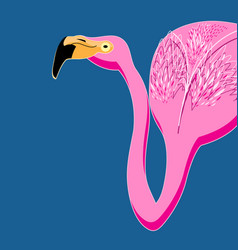 portrait of pink flamingos vector image vector image