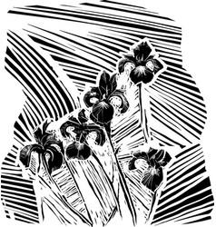 Woodcurt iris flower vector