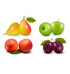 Set of fresh fruit vector image vector image