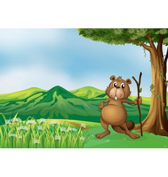 A beaver holding a stick under the tree vector image
