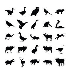 Animals solid icons vector