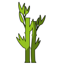 Bamboo plant icon vector