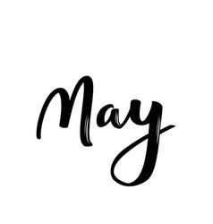 May month name handwritten calligraphic word vector