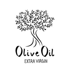 olive tree hand drawn and handwritten text vector image