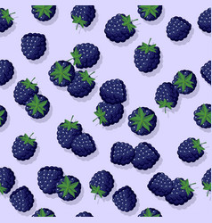 seamless pattern blackberry vector image