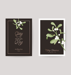 Winter christmas floral mistletoe greeting card vector