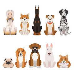funny dogs in cartoon style vector image