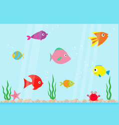 Fish set swimming at aquarium star crab seaweed vector