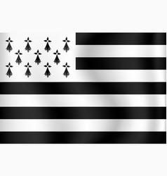 flag brittany - bretagne france vector image