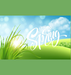 frash spring green grass landscape background vector image
