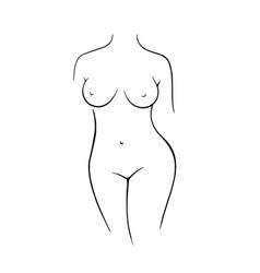 Nude female figure line drawing female vector