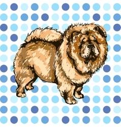 Pets dog vector image