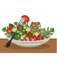 salad vegetables fresh diet lunch image vector image