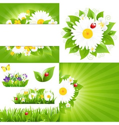 Set From Flower Backgrounds With Ladybug vector