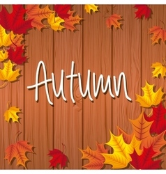 autum season vector image