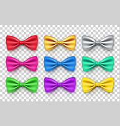 beautiful bow tie from satin material vector image