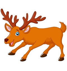 Cartoon deer vector image