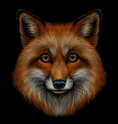 fox graphic color portrait a foxs head vector image