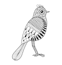 Hand drawn entangle artistic bird for adult vector