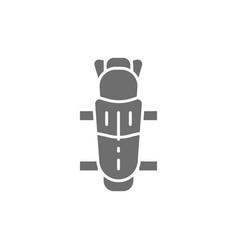 Hockey shin guards protection uniform gray icon vector