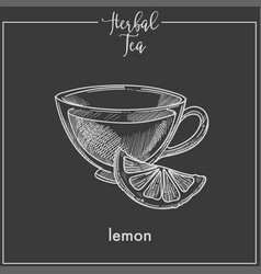 lemon tea cup chalk sketch icon for herbal vector image