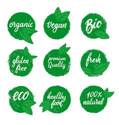 set healthy food emblems eco organic food vector image