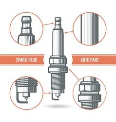 Spark plug auto part vector image