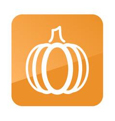 pumpkin outline icon vegetable vector image