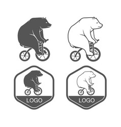 bear on bicycle minimalistic vector image vector image