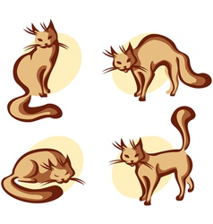 cute home cat vector image vector image