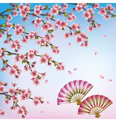 Decorative background with sakura japanese cherry vector image vector image