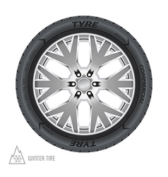 Winter tire abstract vector image vector image