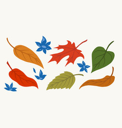 colorful leaves and blue flowers composition vector image