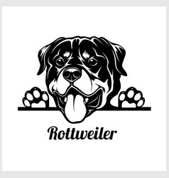dog head rottweiler breed black and white vector image