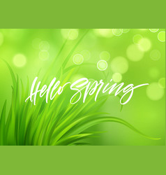 Frash spring green grass background with vector